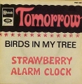 Straberry Alarm Clock